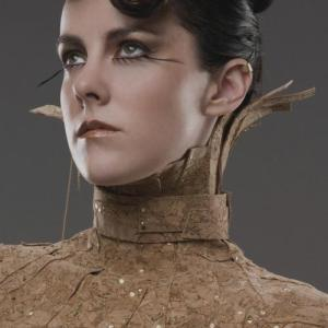 catching-fire-johanna-mason-full-2